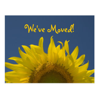 Sunflower Rising Change of Address Postcard