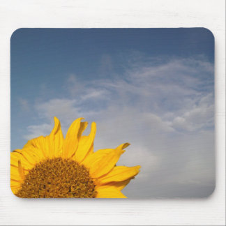Sunflower rising like the sun mouse pad