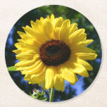 """Sunflower Round Paper Coaster<br><div class=""""desc"""">These disposable coasters are perfect for weddings &amp; summer parties! Featuring an image of a sunflower,  captured by the lens of Jessica Black.</div>"""