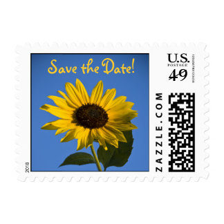Sunflower, Save the Date! Postage Stamp