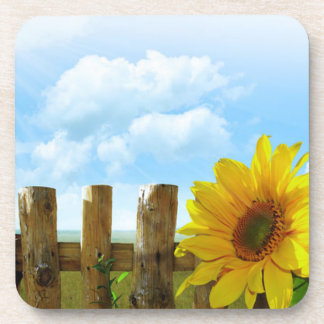 Sunflower Scene Coaster