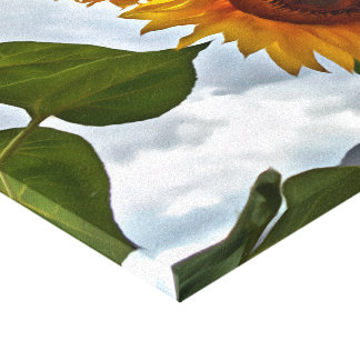 Sunflower Series by Leslie Harlow Canvas Print