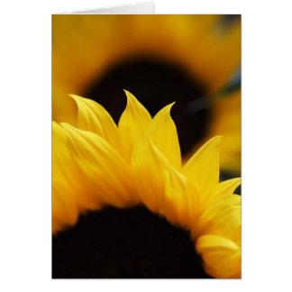 Sunflower Set Greeting Card