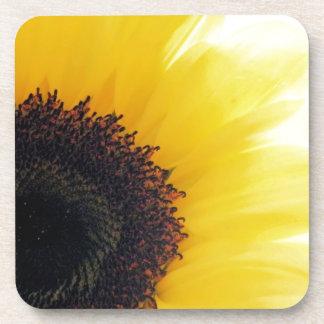 Sunflower Shine Coaster