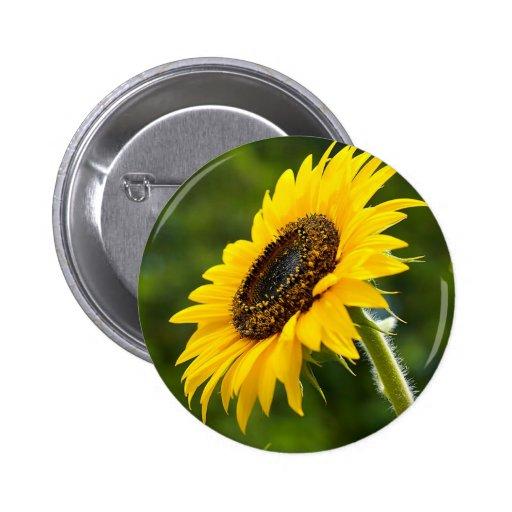 Sunflower Sideshot Pinback Button