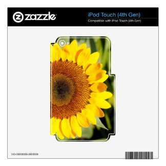 Sunflower iPod Touch 4G Decal