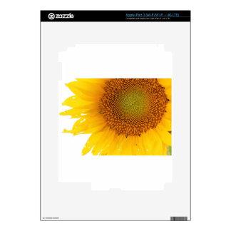 Sunflower iPad 3 Skins