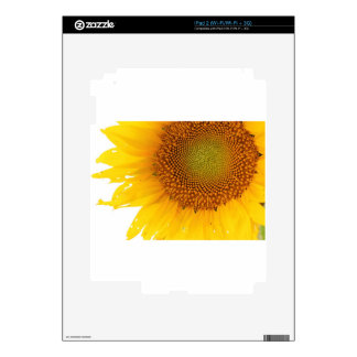Sunflower Skins For The iPad 2
