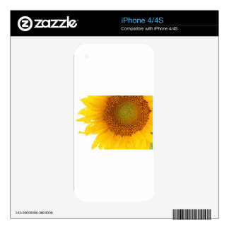 Sunflower Decals For iPhone 4