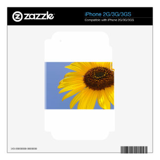 Sunflower Skin For The iPhone 3GS