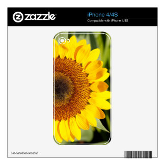 Sunflower Skin For The iPhone 4S