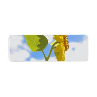 Sunflower Sky Label