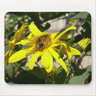 Sunflower snack mouse pad