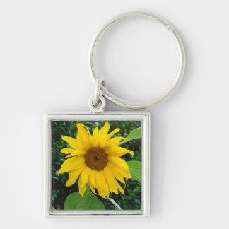 Sunflower Solo Key Chains