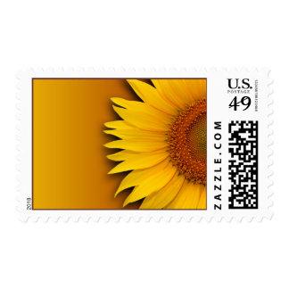 Sunflower Spring Wedding Summer Weddings Postage