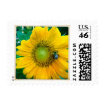 Sunflower Stamp with Bee
