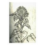Sunflower Stationery Design