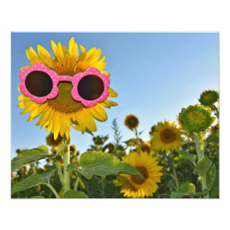 Sunflower Style Photo Print