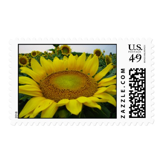 Sunflower Summer Series Postage