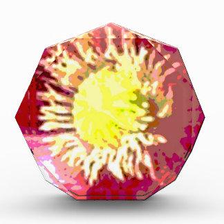 Sunflower Sun Flower Award