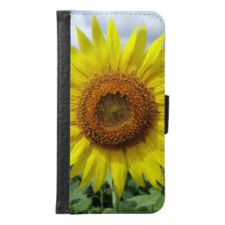 Sunflower Sun Flowers Floral Nature Look
