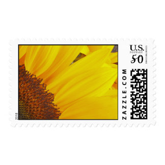 Sunflower Sun Postage