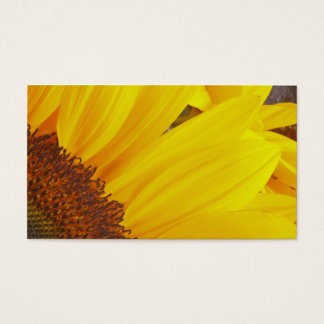 Sunflower Sun Profile Card