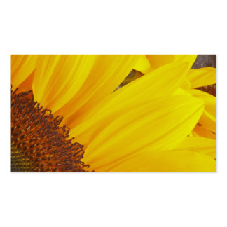 Sunflower Sun Profile Card Double-Sided Standard Business Cards (Pack Of 100)
