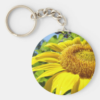 SUNFLOWER SunFlowers Sun Flowers Cards Gifts Mugs Keychain