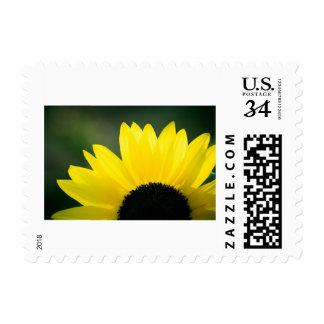 Sunflower Sunrise Postage