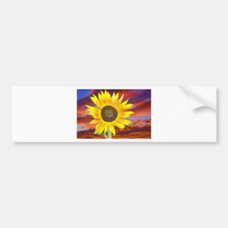 Sunflower Sunset Bumper Sticker