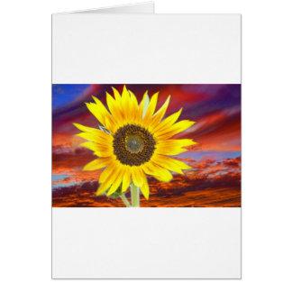 Sunflower Sunset Card