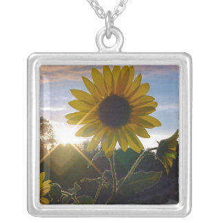 Sunflower Sunset Pendant
