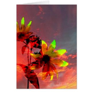 Sunflower Sunset Photo Card