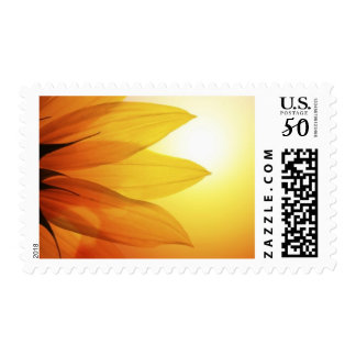 Sunflower Sunset Postage Stamps