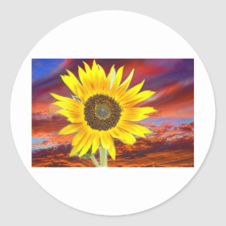 Sunflower Sunset Classic Round Sticker