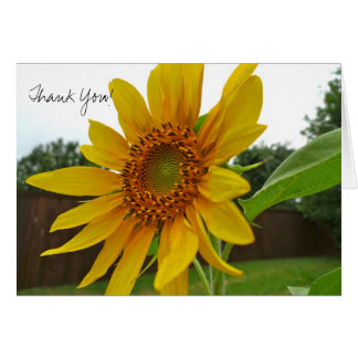 Sunflower Thank You Card-blank Card