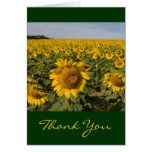 Sunflower Thank You Greeting Card