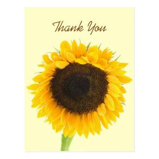 Sunflower Thank You Postcard