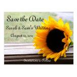 Sunflower theme postcard