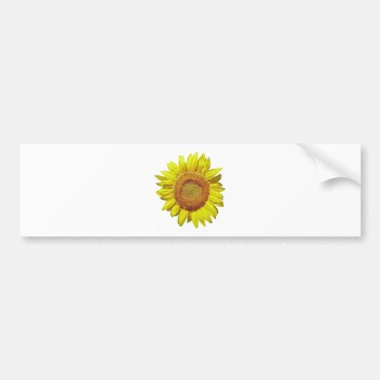 Sunflower - Tournesol (02) Bumper Sticker