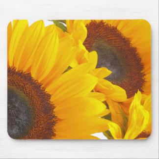 Sunflower Triplettes Mouse Pad