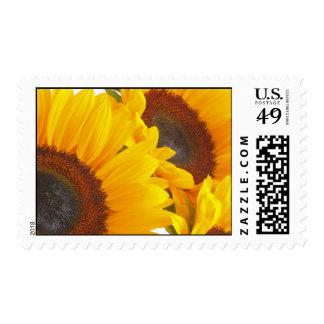 Sunflower Triplettes Postage