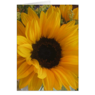 Sunflower Tune Notecard