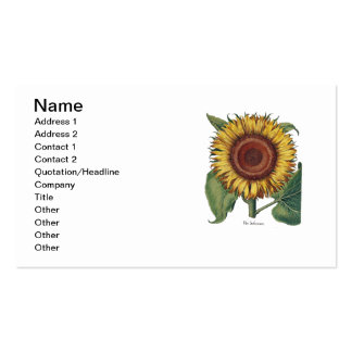 Sunflower Vintage Damask Wallpaper Collage Double-Sided Standard Business Cards (Pack Of 100)