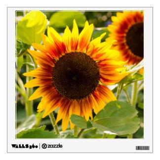 Sunflower Room Graphic