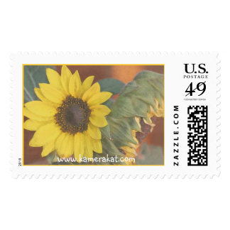 Sunflower Watercolor Postage Stamps