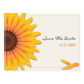 Sunflower Wedding Save the Date Announcement Card2 Postcard