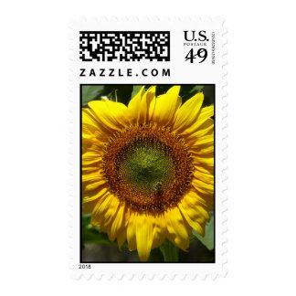 Sunflower with Bee Postage Stamp