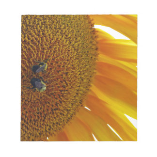 Sunflower with Bumblebees Notepad